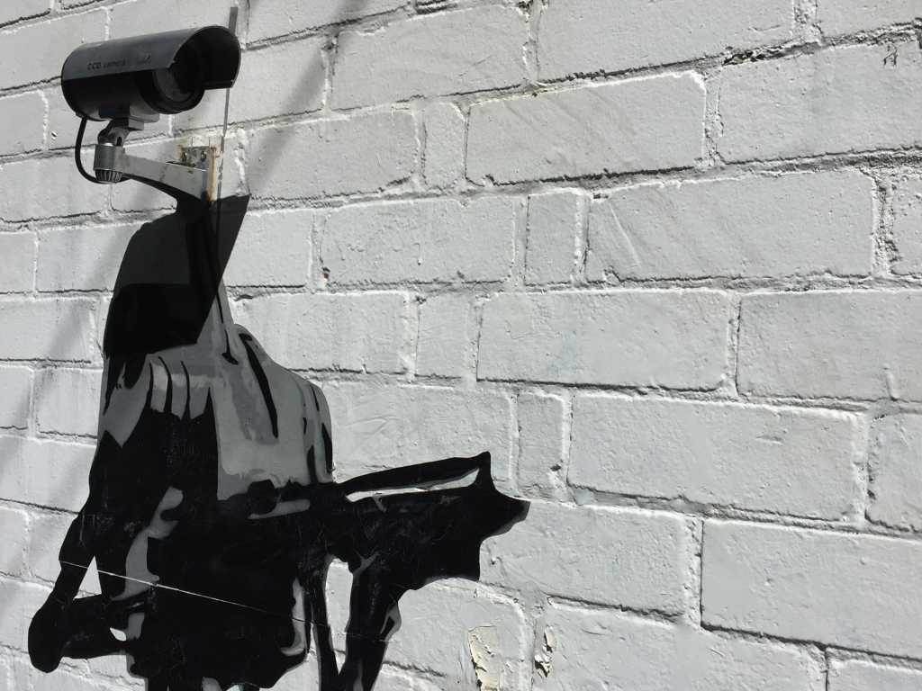 surveillance, spying, cameras, IP cameras