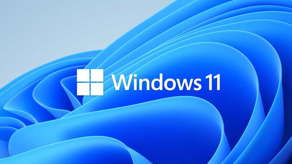 Windows 11 Logo on Bloom Background