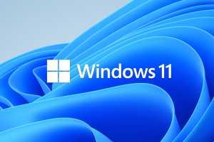 The Windows 11 upgrade checklist